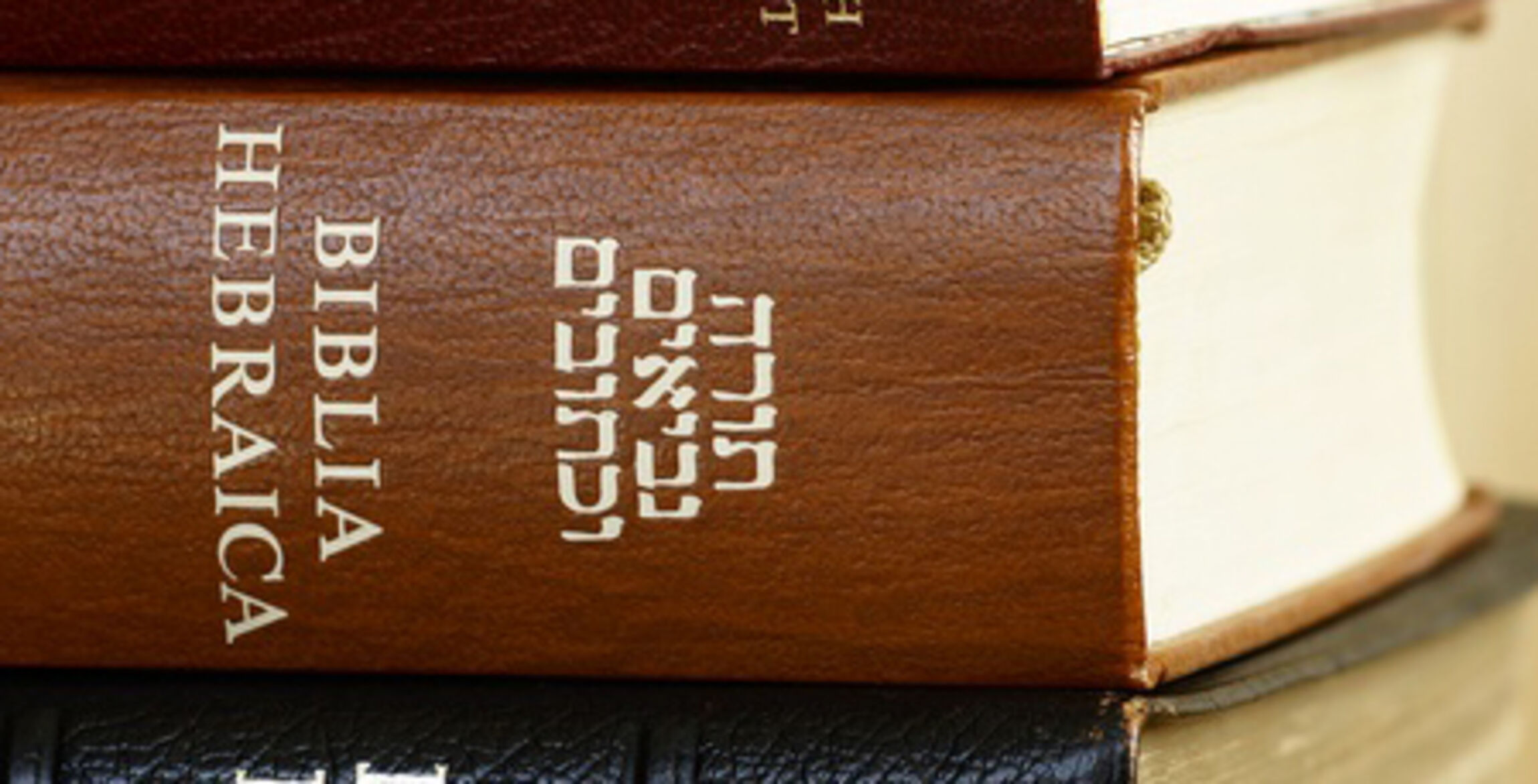 Aus-alt-mach-Neu-Holy-Bible-in-different-languages_auschnitt_2