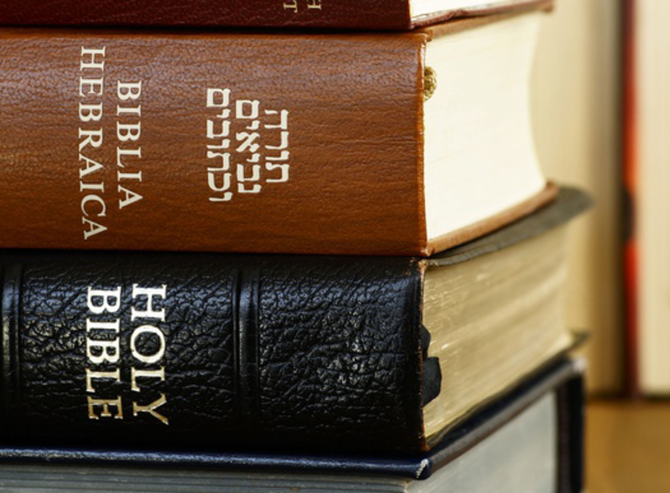 Aus-alt-mach-Neu-Holy-Bible-in-different-languages_ausschnitt