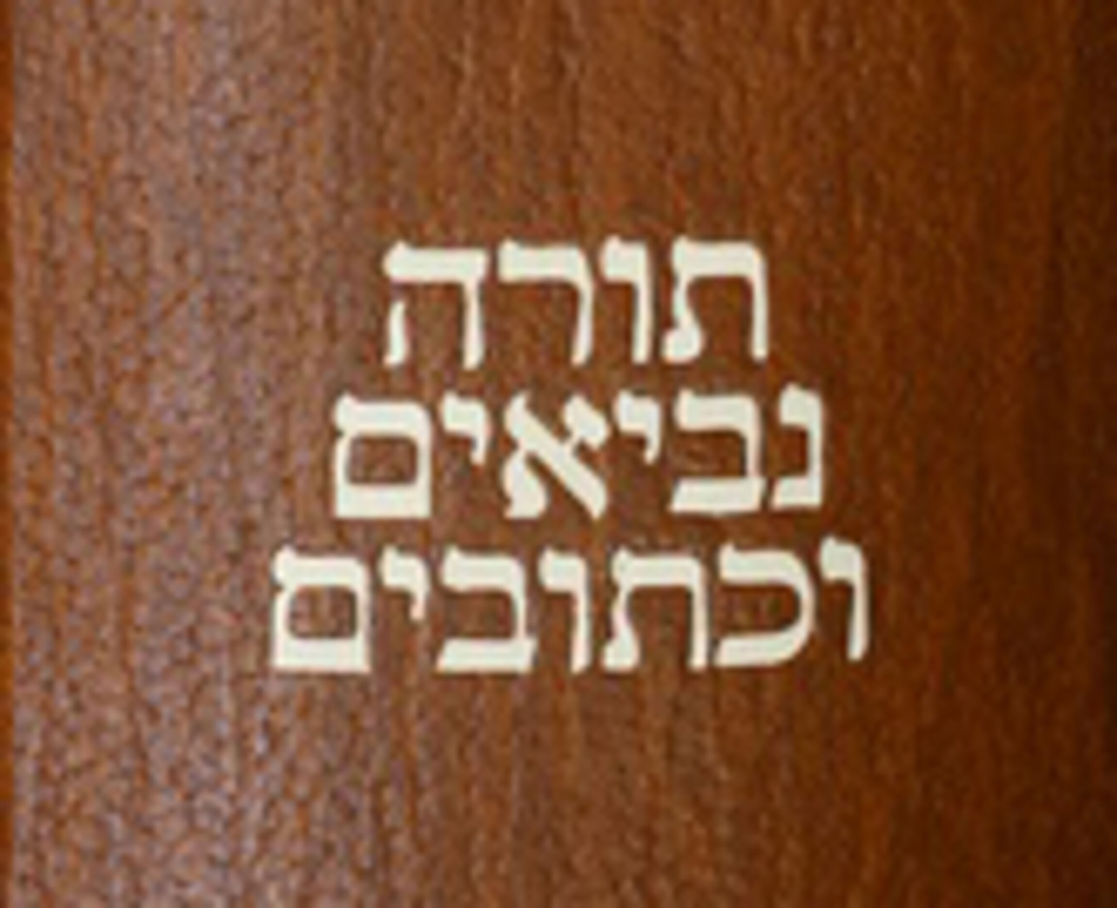 Aus alt mach Neu Holy Bible in different languages_hebraica_hochkannt_klein