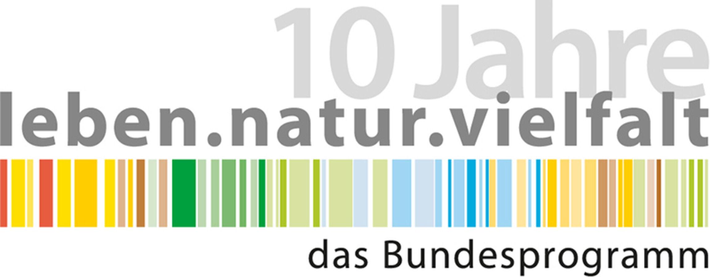 21-07-Bick-Logo-Bundesprogramm