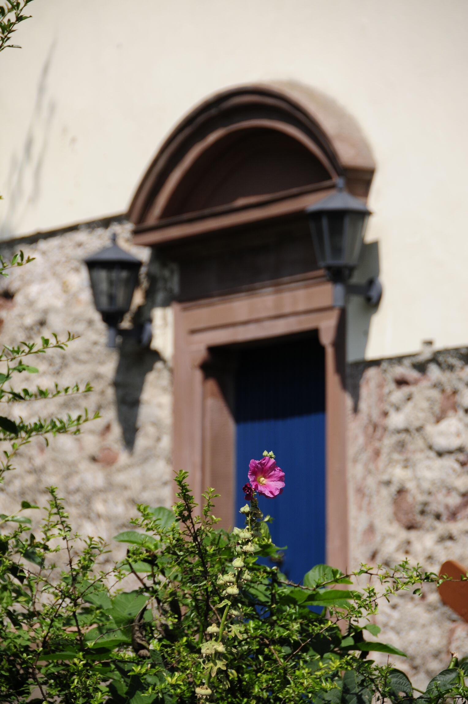 Kirche Eingangtür mit Blume