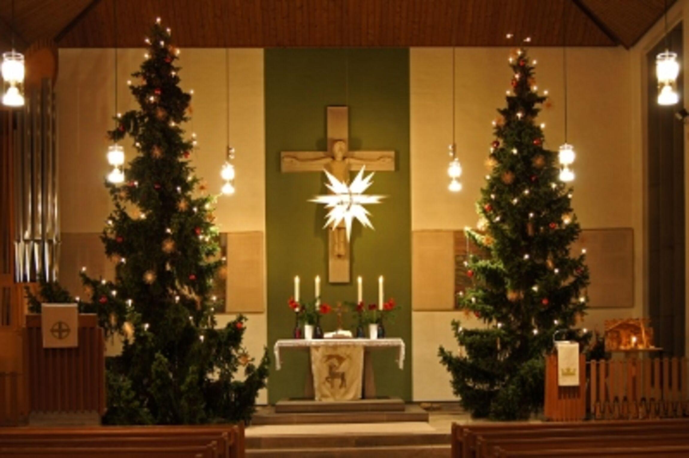 Weihnachtsbäume 2013 (400x266)