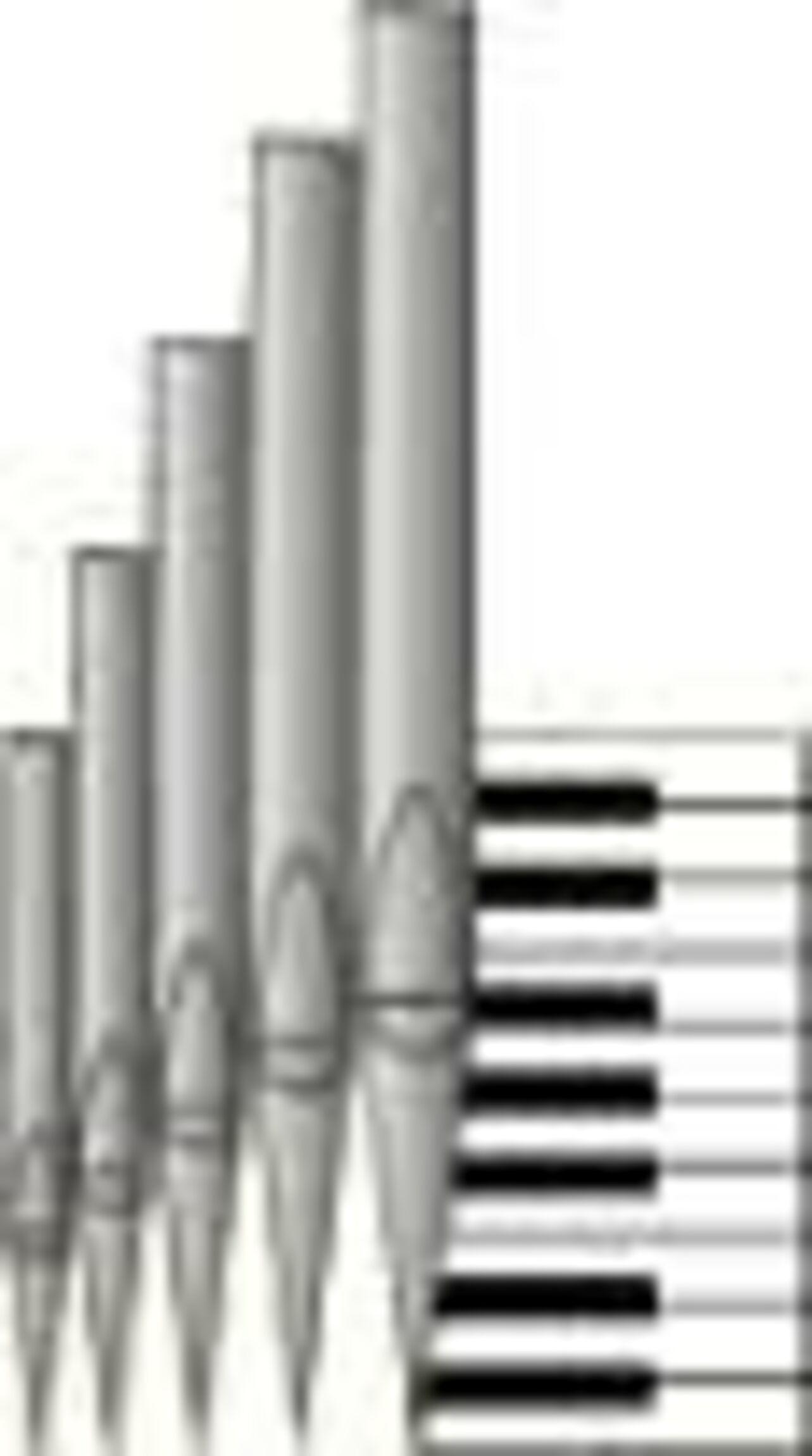 Orgel Grafik