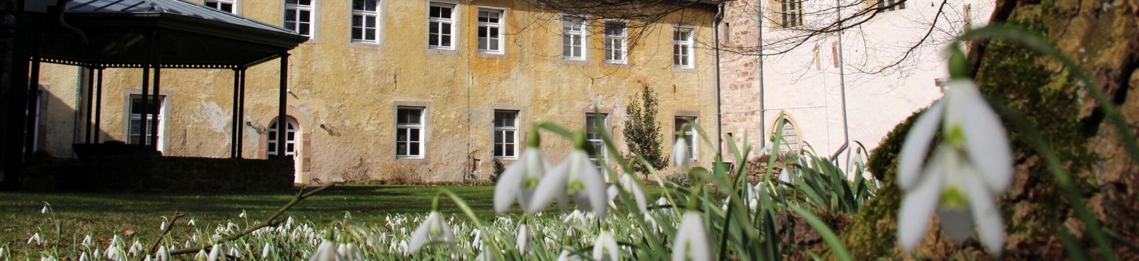 Frühling in Bursfelde