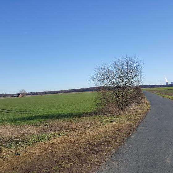 Foto: E. Nerkelun, Feldmark bei Vöhrum