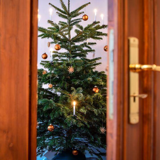 Weihnachten 2021, Foto Jens Schulze