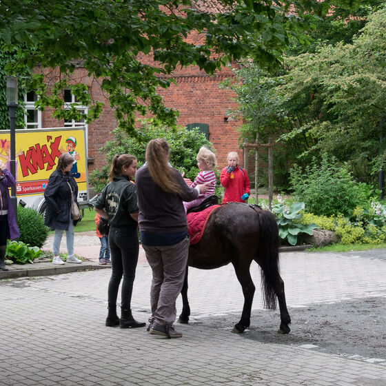 Sommerfest_in_Meinerdingen_BS20170625-8105