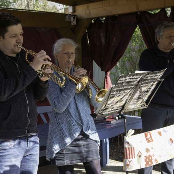 Osterhasen beim Konzertieren