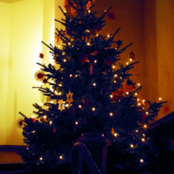 Weihnachtsbaum_2016