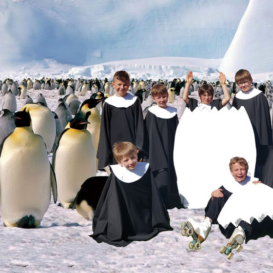 Pinguinmusical-2016