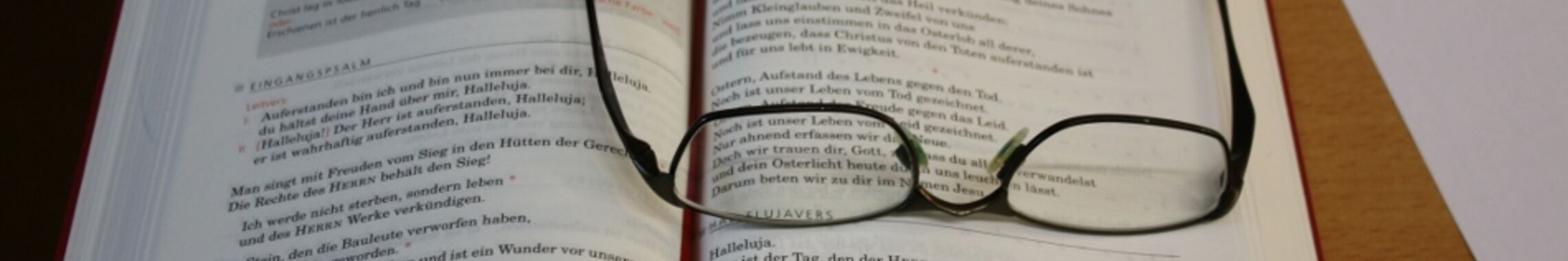 Kopfgrafik Brille