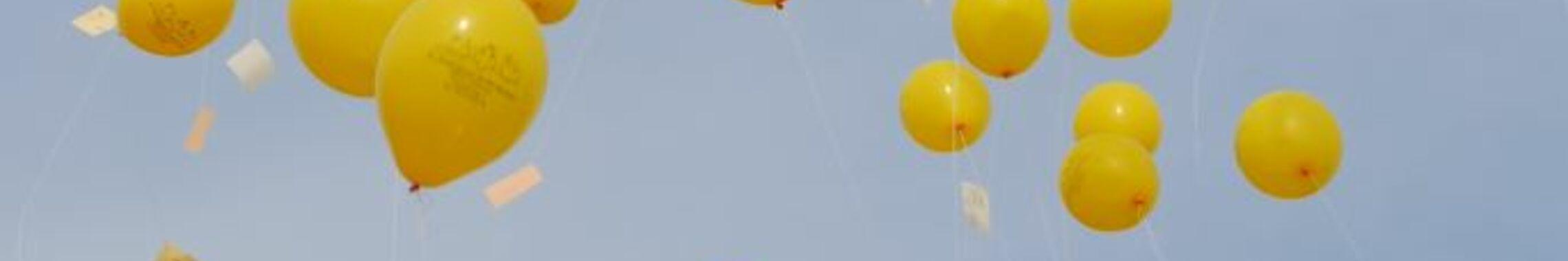 gelbe Luftballons webo