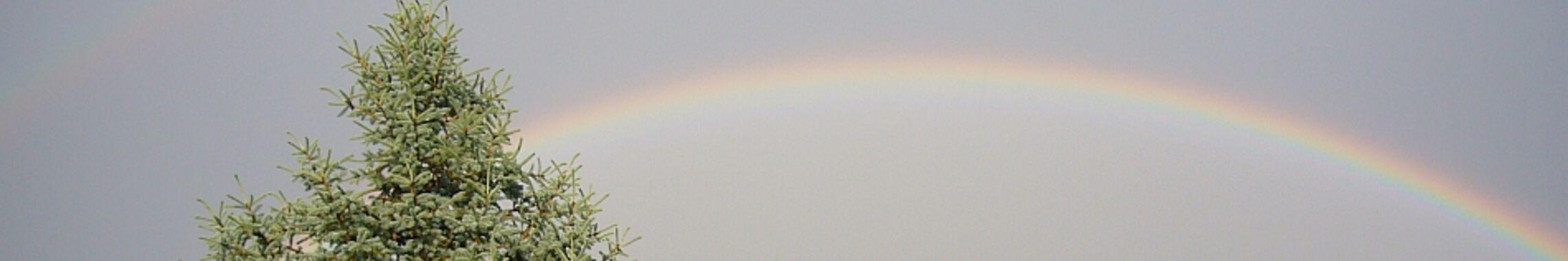 Ein Regenbogen überspannt das Land