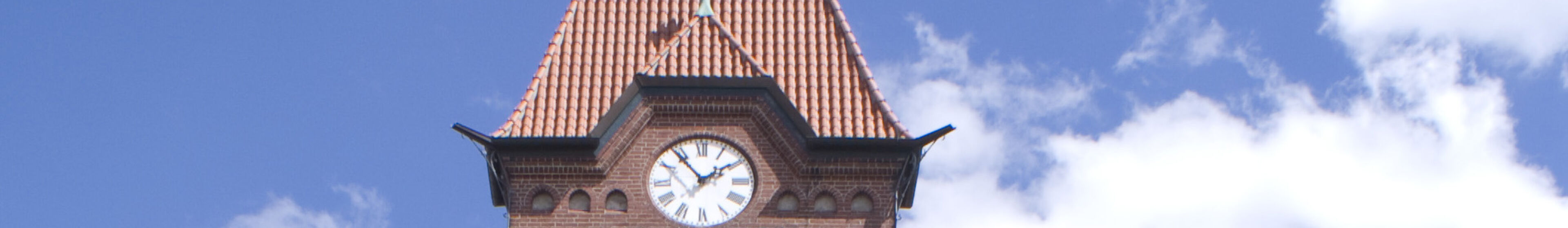 Dahlenburg uhr kopfbild