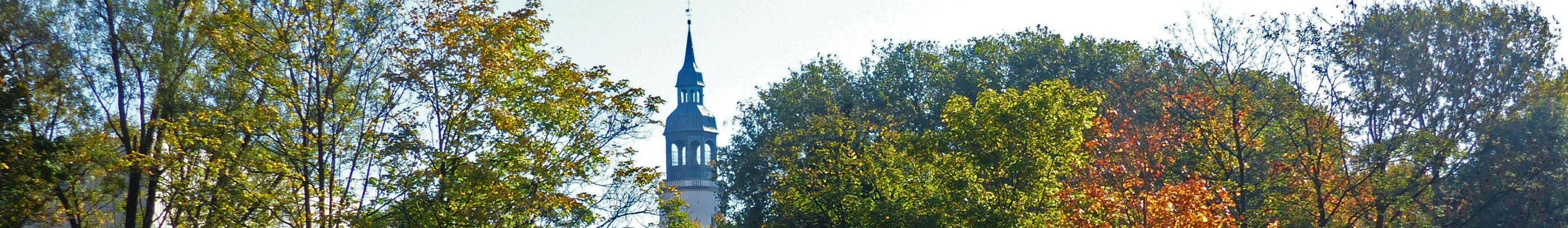 Kirchturm mit Baeumen-2