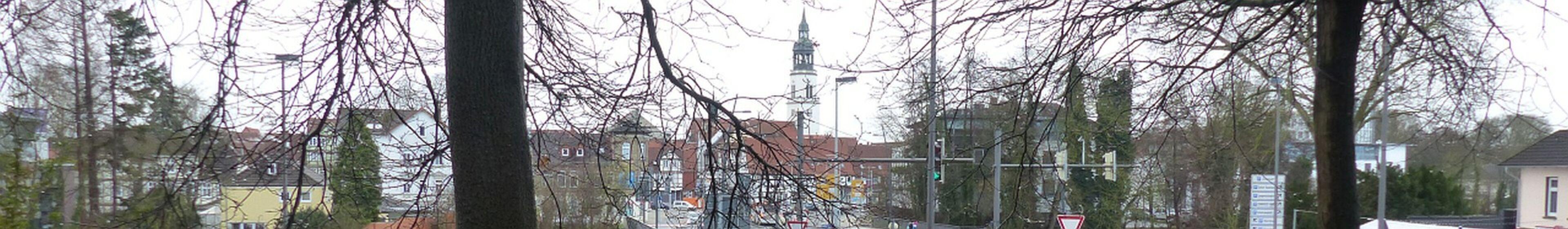 Stadtkirche vom Kapellenberg gesehen