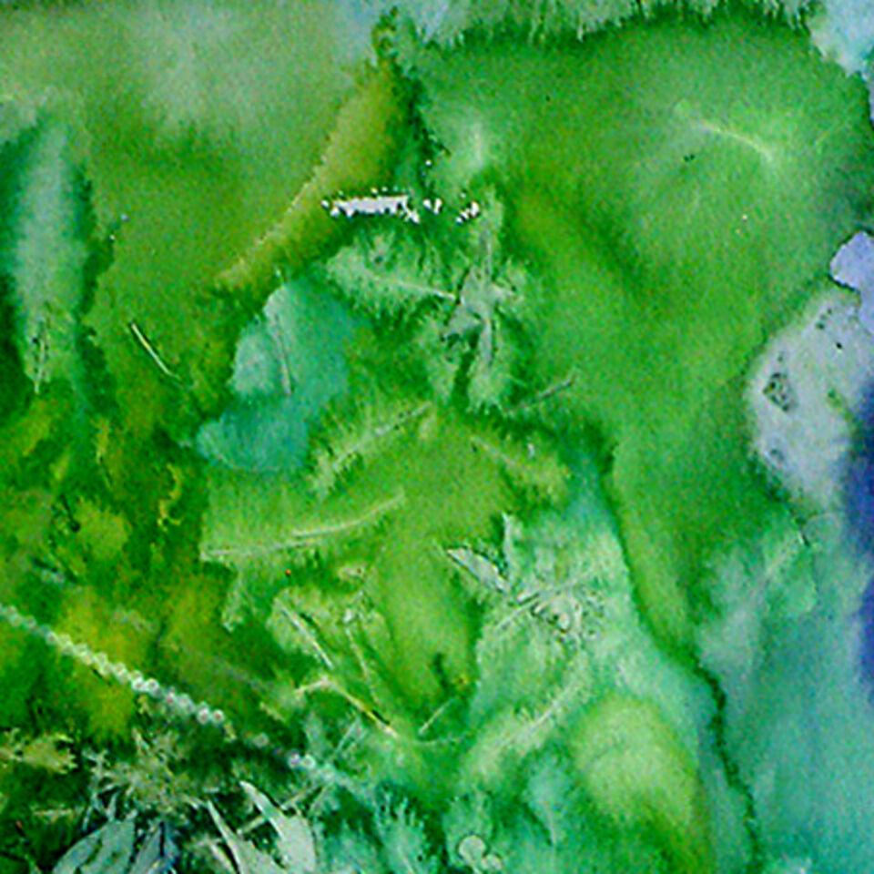 Liturgische Farbe Grün - Bild von Erich Grün