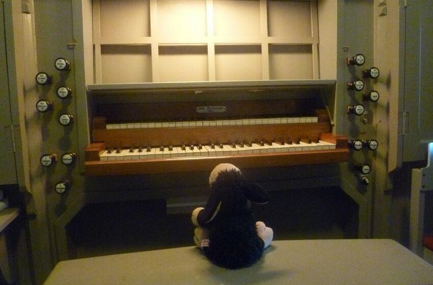Orgel Kirchwalsede