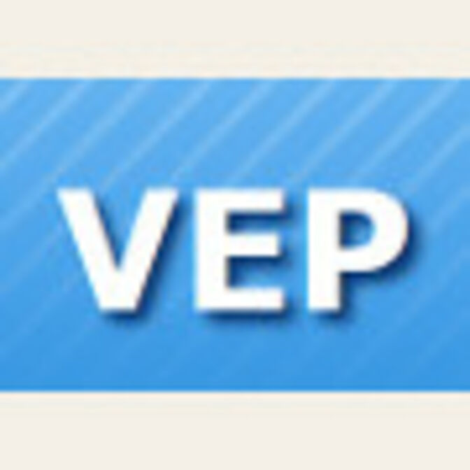 logo_vep_fond90