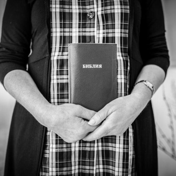 Daubert Bibel